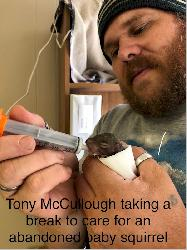 Tony McCullough taking a break to care for an abandoned baby squirrel.